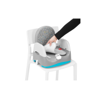 Comfort & Go Home Booster Seat (Grey / Blue)