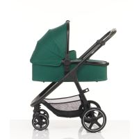 Cosmos Carrycot in Green